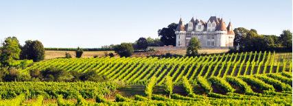 Vue du chateau vignoble bordelais